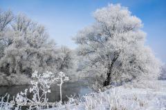 030-Schnee-und-Rauhreif-an-der-Leine-Z7-049310