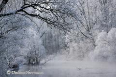 040-Schnee-und-Rauhreif-an-der-Leine-Z7-049337