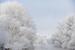060-Schnee-und-Rauhreif-an-der-Leine-Z7-049413