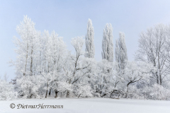 090-Schnee-und-Rauhreif-Badeteich-Z7-049550