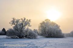 142-Schnee-und-Rauhreif-an-der-Leine-Z7-049270