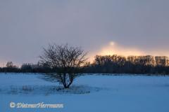 144-Sonnenuntergang-Busch-_DSC9221